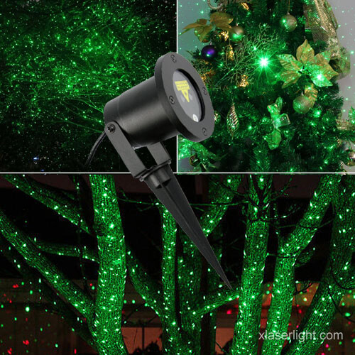 Garden Laser Light Single Green X 21p